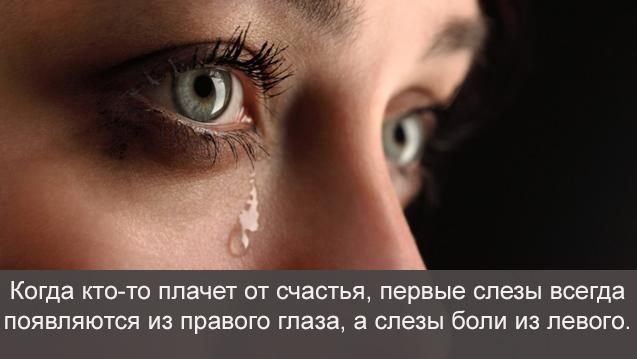 bbfcfe9a77188118387e68d04763b62f 30 поразительных фактов о чувствах и поведении человека