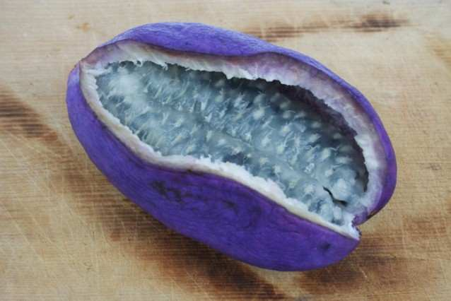 fruct-19.jpg