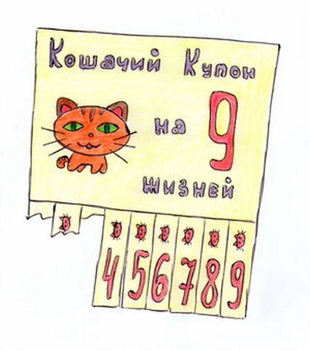 kotw11.jpg