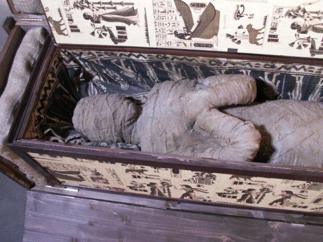Мальчик из Германии обнаружил в недрах бабушкиного чердака древнюю египетскую мумию.