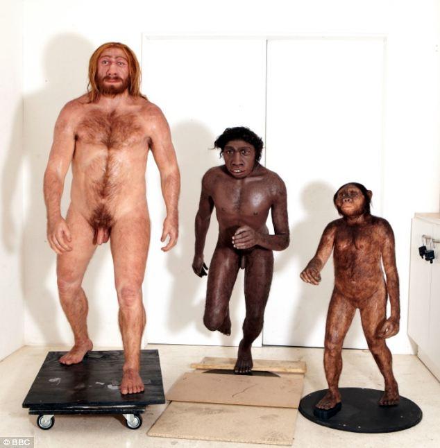 seks-u-neandertaltsev